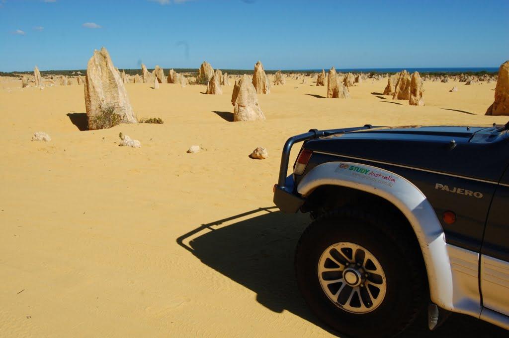 Outback en coche