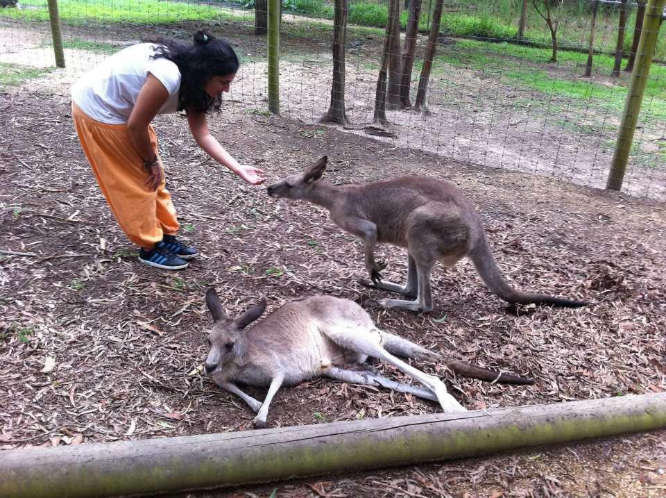 Go Study Australia Sydney
