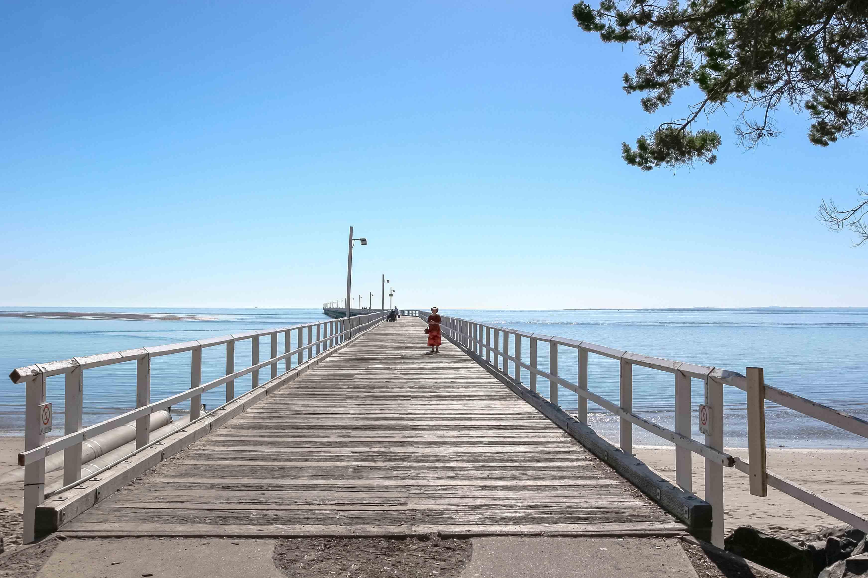 Ballenas en playas australianas