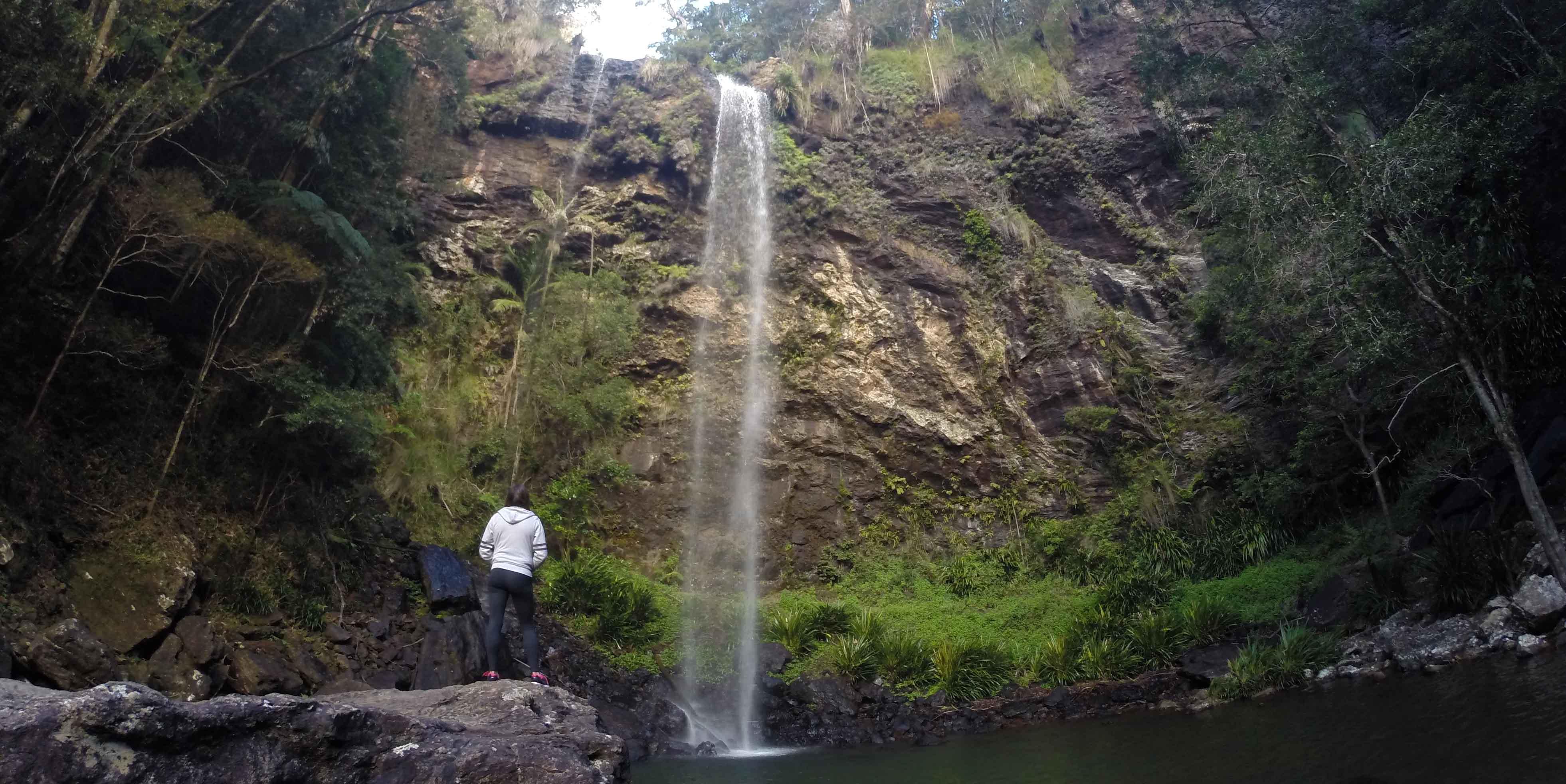 Springbrook National Park Australia