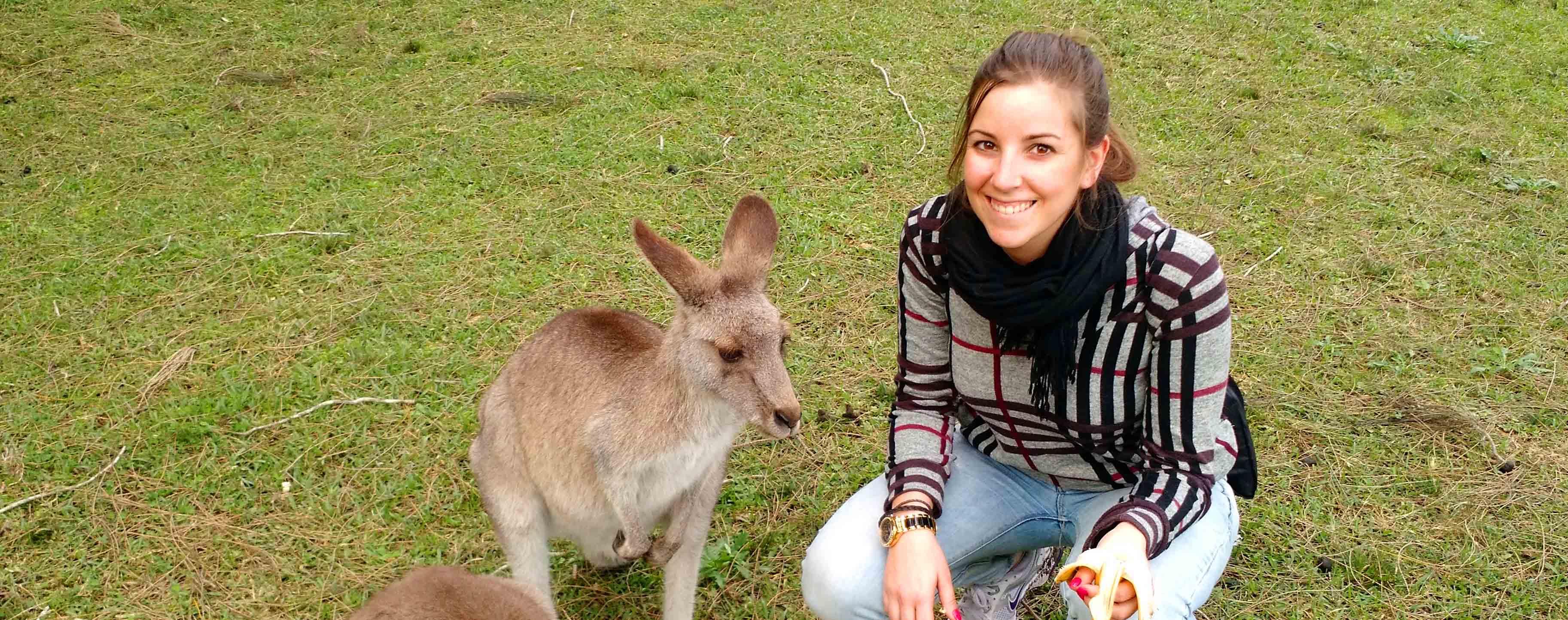 Miembro Go Study en Sydney